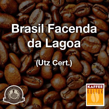 brasil-facenda-da-lagoa