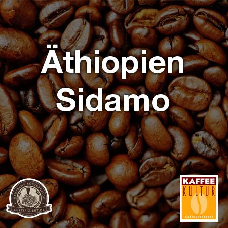kaffeekultur-sidamo